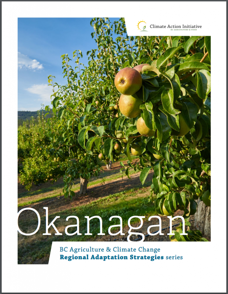 cover of PDF describing Okanagan regional adaptation strategies