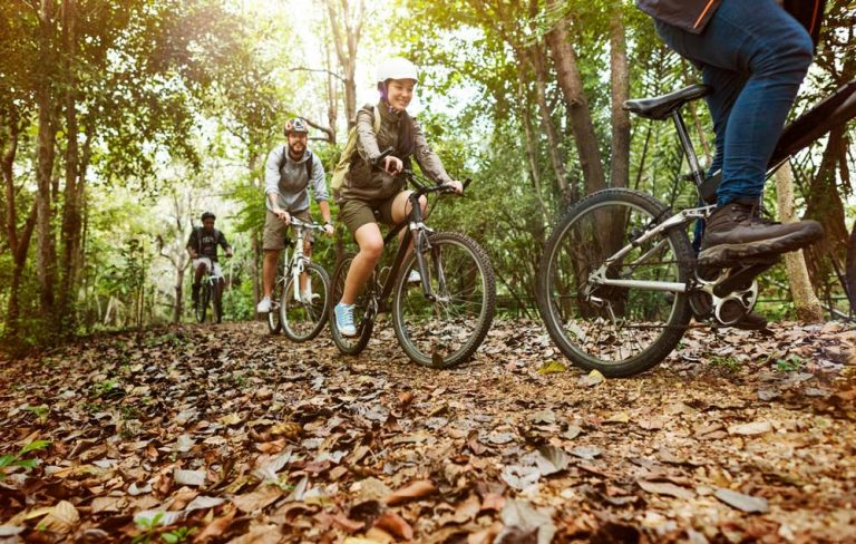 A group of cyclists ride by in a park covered in trees and some autumn leaves.