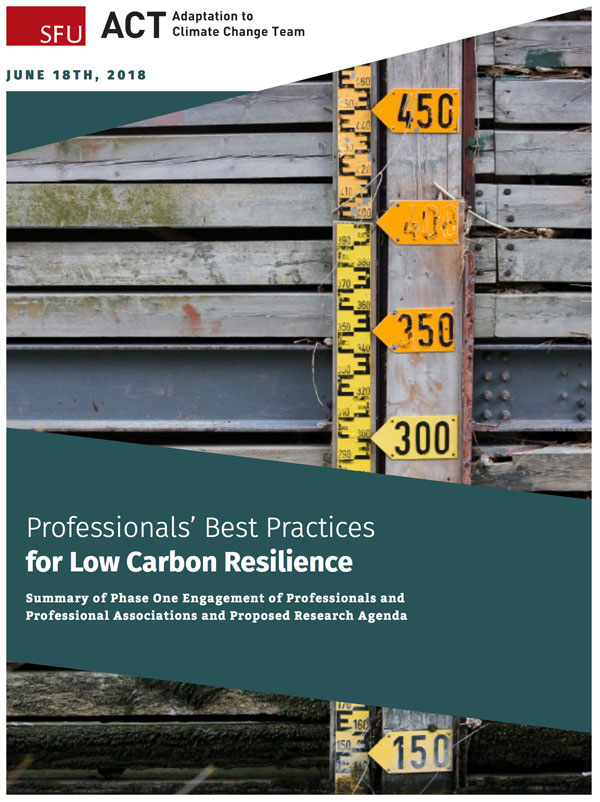 Climate change report cover: low carbon resilience