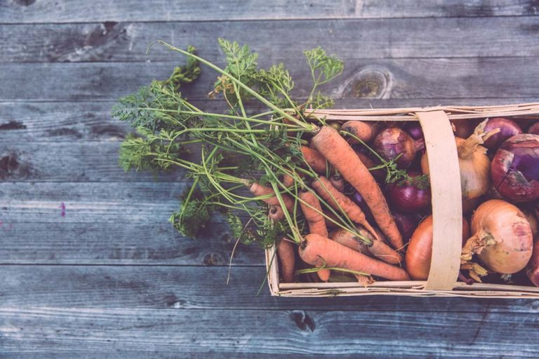 A basket of garden vegetables including carrots and potatoes rests on a wooden outdoor table.