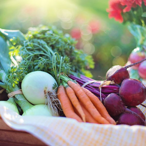 Vegetable basket of carrots, onions, beets and more