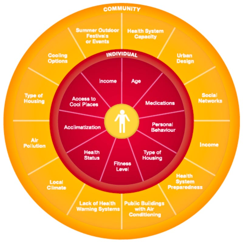 A wheel diagram with two hubs of community and individual factors in health vulnerabilities.