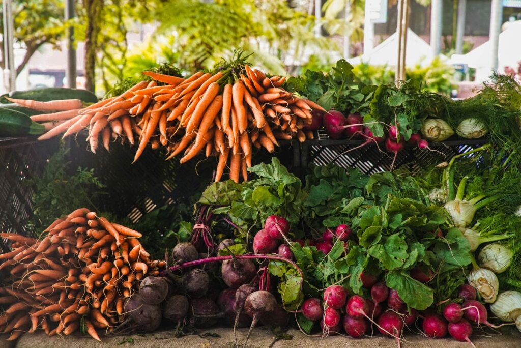 Beautiful carrots, radishes, and more, lay across an table at the outdoor garden.